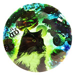 Enforcer DyeMax MonsterTruck Kitty
